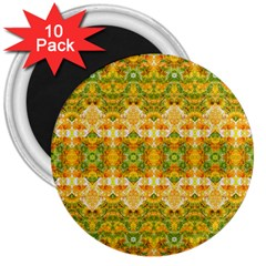 Boho Stylized Floral Stripes 3  Magnets (10 Pack)  by dflcprints