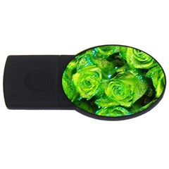 Festive Green Glitter Roses Valentine Love  Usb Flash Drive Oval (2 Gb)  by yoursparklingshop