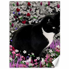 Freckles In Flowers Ii, Black White Tux Cat Canvas 36  X 48   by DianeClancy