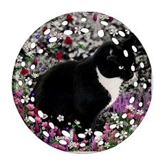 Freckles In Flowers Ii, Black White Tux Cat Round Filigree Ornament (2side) by DianeClancy