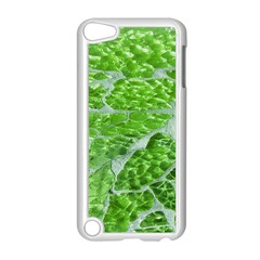 Festive Chic Green Glitter Shiny Glamour Sparkles Apple Ipod Touch 5 Case (white) by yoursparklingshop