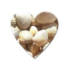 Tropical Exotic Sea Shells Heart Magnet by yoursparklingshop