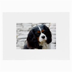 Cavalier King Charles Spaniel 2 Large Glasses Cloth by TailWags