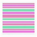 Pink Green Stripes Medium Glasses Cloth (2-Side)