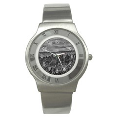 Ecuador Landscape Scene At Andes Range Stainless Steel Watch by dflcprints