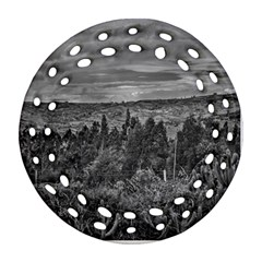 Ecuador Landscape Scene At Andes Range Ornament (round Filigree)  by dflcprints