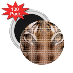 Tiger Tiger 2 25  Magnets (100 Pack)  by cocksoupart