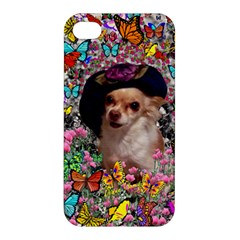 Chi Chi In Butterflies, Chihuahua Dog In Cute Hat Apple Iphone 4/4s Premium Hardshell Case by DianeClancy