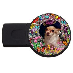 Chi Chi In Butterflies, Chihuahua Dog In Cute Hat Usb Flash Drive Round (2 Gb)  by DianeClancy