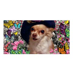 Chi Chi In Butterflies, Chihuahua Dog In Cute Hat Satin Shawl by DianeClancy