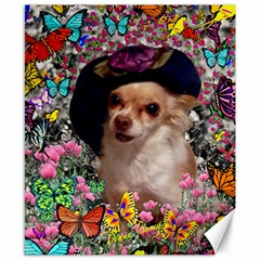 Chi Chi In Butterflies, Chihuahua Dog In Cute Hat Canvas 8  X 10  by DianeClancy