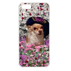 Chi Chi In Flowers, Chihuahua Puppy In Cute Hat Apple Iphone 5 Seamless Case (white) by DianeClancy
