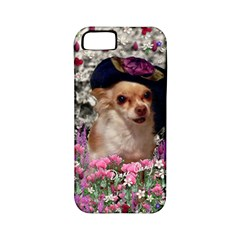 Chi Chi In Flowers, Chihuahua Puppy In Cute Hat Apple Iphone 5 Classic Hardshell Case (pc+silicone) by DianeClancy