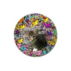 Emma In Butterflies I, Gray Tabby Kitten Magnet 3  (round) by DianeClancy