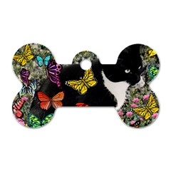 Freckles In Butterflies I, Black White Tux Cat Dog Tag Bone (two Sides) by DianeClancy