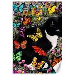 Freckles In Butterflies I, Black White Tux Cat Canvas 20  X 30   by DianeClancy