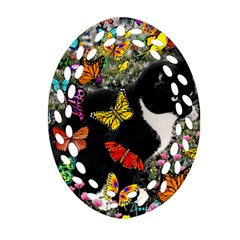 Freckles In Butterflies I, Black White Tux Cat Ornament (oval Filigree)  by DianeClancy