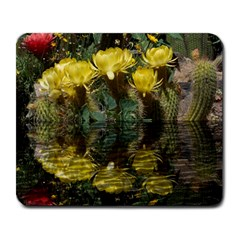 Cactus Flowers With Reflection Pool Large Mousepads by MichaelMoriartyPhotography