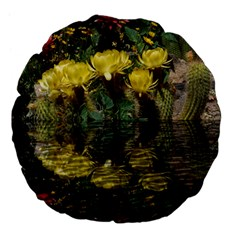 Cactus Flowers With Reflection Pool Large 18  Premium Flano Round Cushions by MichaelMoriartyPhotography