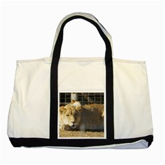 FeMale Lion Two Tone Tote Bag by jackiepopp