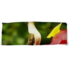 Female Ruby Throated Hummngbird Body Pillow Case Dakimakura (Two Sides) by jackiepopp