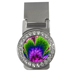 Amazing Special Fractal 25c Money Clips (cz)  by Fractalworld