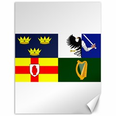 Four Provinces Flag Of Ireland Canvas 12  x 16   by abbeyz71