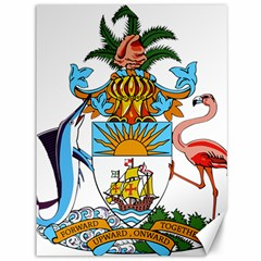 Coat of Arms of the Bahamas Canvas 36  x 48   by abbeyz71