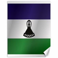 Flag Of Lesotho Canvas 12  x 16   by artpics
