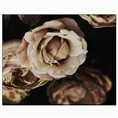 Roses Flowers Canvas 8  x 10  by vanessagf