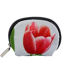 Red Tulip Watercolor Painting Accessory Pouches (Small)  by picsaspassion