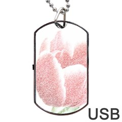 Red Tulip Pencil Drawing Dog Tag Usb Flash (two Sides)  by picsaspassion