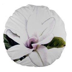 White Magnolia Pencil Drawing Art Large 18  Premium Round Cushions by picsaspassion
