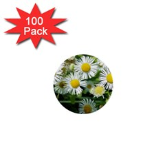White Summer Flowers Watercolor Painting Art 1  Mini Buttons (100 Pack)  by picsaspassion