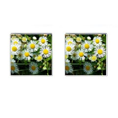 White Summer Flowers Oil Painting Art Cufflinks (square) by picsaspassion