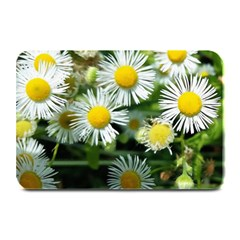 White Summer Flowers Oil Painting Art Plate Mats by picsaspassion