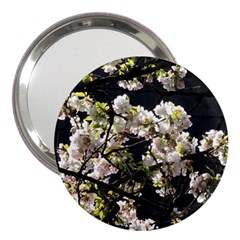 Japanese Cherry Blossom 3  Handbag Mirrors by picsaspassion