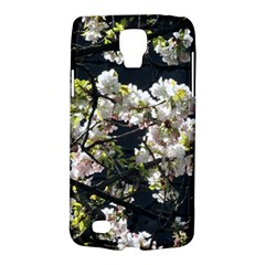 Japanese Cherry Blossom Galaxy S4 Active by picsaspassion