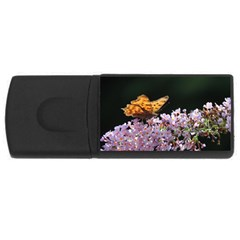 Butterfly sitting on flowers USB Flash Drive Rectangular (2 GB)  by picsaspassion