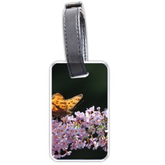 Butterfly sitting on flowers Luggage Tags (Two Sides) by picsaspassion