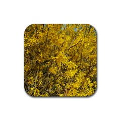 Nature, Yellow Orange Tree Photography Rubber Square Coaster (4 Pack)  by yoursparklingshop