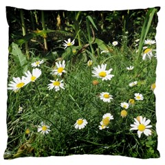 Wild Daisy Summer Flowers Large Cushion Case (two Sides) by picsaspassion