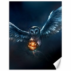 Owl And Fire Ball Canvas 12  x 16   by Zeze