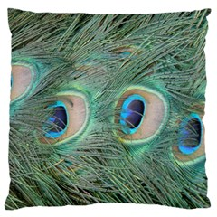 Peacock Feathers Macro Large Cushion Case (two Sides) by GiftsbyNature