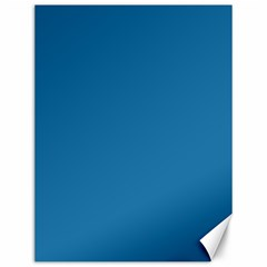 Pelorous Blue Colour Canvas 12  x 16   by artpics