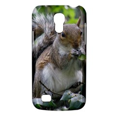 Gray Squirrel Eating Sycamore Seed Galaxy S4 Mini by GiftsbyNature