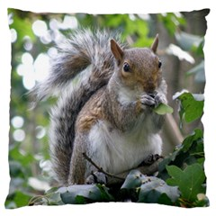 Gray Squirrel Eating Sycamore Seed Standard Flano Cushion Case (One Side) by GiftsbyNature