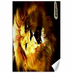 Lion 20x30 Portrait - Canvas 20  x 30