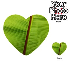 Ensete Leaf Multi Purpose Cards (heart)  by picsaspassion