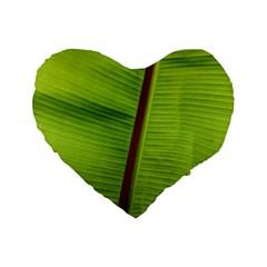 Ensete Leaf Standard 16  Premium Flano Heart Shape Cushions by picsaspassion